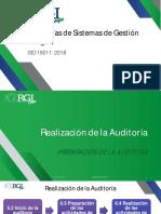 REALIZACIÓN DE AUDITORÍAS