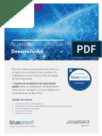 Blue Prism - Developer Certification Exam (ES).pdf