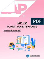 SAP PM MAINTENACE.pdf