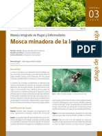 FICHA_INIA_03.pdf