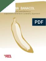 Banacol_paramilitarismo_uraba.pdf
