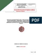 Protocolo Transporte Carga.docx