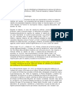 FICHAS_TESIS_resumiendo.docx