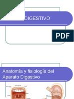 1. Sistema Digestivo