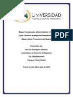 mapas conceptuales, Capítulos 4, 5 y 6-  Negocios Internacionales-convertido