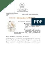 Guía Grupal 2