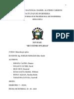 Informe de secciones pulidas corregido.docx