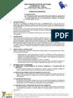 Modelo de TDR.doc