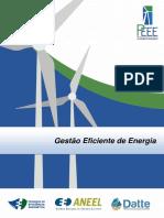 3 - PEEE - Gestão Eficiente de energia.pdf