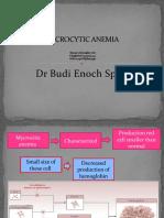 Microcytic Anemia,Iron Deff Dan Thalasemia