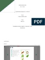 Task2_Writing_Production_Javier_Esquinas.pdf