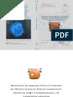 Mecanismos de respuesta frente a la infección por Botrytis cinerea en tomate - estudio de glucanasas y tratamientos inductores