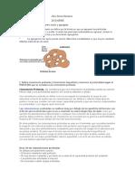 TRABAJO 01 MECANICA DE SUELOS II.docx