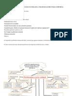 UNIDAD IV PROBLEMÁTICAS SOCIO-CULTURAL DE LA VIDA HUMANA ESTRUCTURAL E INDIVIDUAL (1).pdf