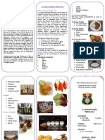 Gastronomia Peruana Triptico Docx