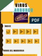 Virus Marburgo