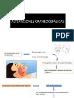 2. Malformaciones craneofaciales.pdf