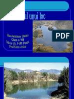 lacul_apa_statatoare_ardelean_simina_clasa_a_viii