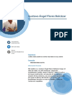 C.V Gustavo Ángel Flores