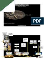 MAPA MENTAL HISTORIA DE LA PSICOPATOLOGIA ACTIVIDAD 1