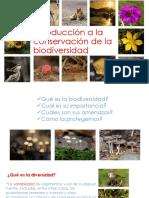 VII. Biodiversidad y SBAP