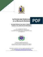 Flexibilidad-curricular-en-la-educación-superior.pdf