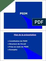 4. PSIM presentation exemple