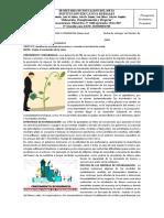 GUIA C.POLITICAS 11º4-P2.docx