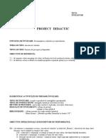 proiect ed.plastica