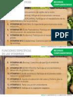 Funciones Vitaminass