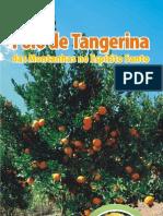 Folder Polo Tangerina