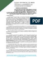 TDR INSPECCIÓN MADRE DE DIOS.docx