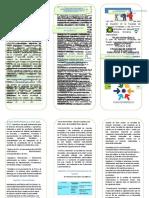 triptico plan de estudios.docx