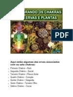 Ervas para cada Chakra-1-1 2.pdf
