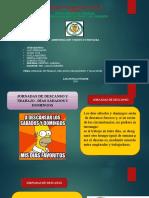 JORNADAS DE TRABAJO, DESCANSOS OBLIGATORIOS Y VACACIONES. listo.pptx