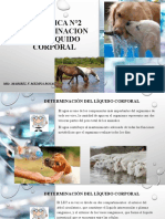 PRáCTICA N°2 DETERMINACION DEL LÍQUIDO CORPORAL.pptx