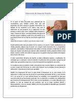 318245797-Queso-de-Chancho.docx