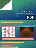7° Año Básico 2020. Célula Eucarionte y Célula Procarionte.pptx