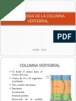 OSTEOLOGIA DE LA COLUMNA VERTEBRAL_20180606070108