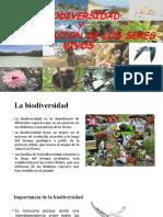 BIODIVERSIDAD Y CLASIFICACION DE LOS SERES VIVOS