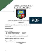psr monografía.docx