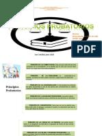 principios probatorios yenny pineda