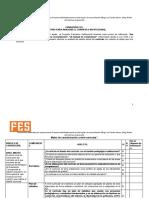 Matriz de análisis P.E I.