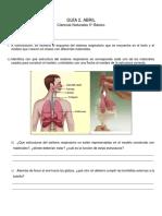 guía SIST. RESP. E INTERCAMBIO GASEOSO.pdf