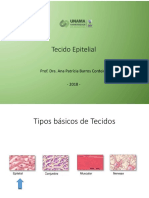 3_Aula_Tecido_Epitelial