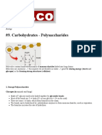 9. Carbohydrates - Polysaccharides