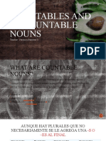 countables and uncountables noun