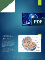 La célula (1) comprimido .pptx