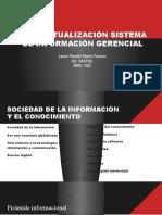 CONTEXTUALIZACIÓN SISTEMA DE INFORMACIÓN GERENCIAL
