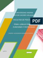 LOBULO FRONTAL FUNCIONES Y PATOLOGIAS.docx